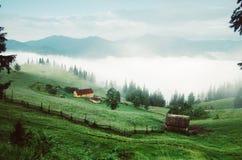 Туманнейший ландшафт утра Стоковые Изображения