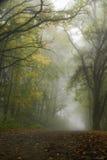 туманнейший пейзаж Стоковое фото RF