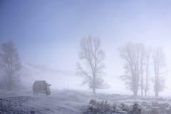 туманнейший хайвей Стоковые Фотографии RF