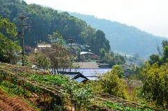 Туманное горное село Таиланд 2 перспективы Стоковые Изображения RF
