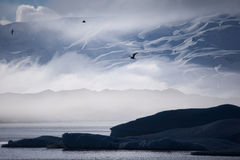 Туманное ледниковое озеро Стоковое Фото