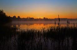 Туманное зарево восхода солнца отразило в неподвижном озере, silhouetting Bulrushes Стоковая Фотография