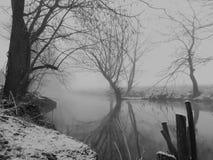 туманное настроение стоковое фото rf