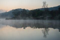 Туманное на реке Стоковые Изображения
