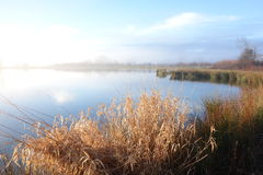 Туманное озеро в солнечном свете утра Стоковое Изображение RF