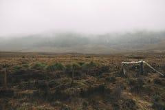 Туманное поле на горе Стоковое фото RF