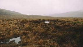 Туманное поле на горе Стоковые Изображения RF
