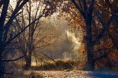 Туманное река в ноябре стоковые фото