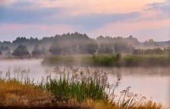 Туманное река в утре Туманный рассвет на лете туманное утро Стоковое Изображение RF