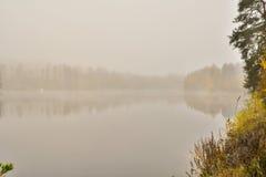 Туманное река осени Стоковые Изображения RF