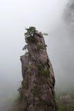 Туманное утро в горе Huangshan, Китай Стоковые Изображения