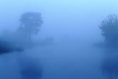 Туманное утро в голубых цветах Стоковая Фотография