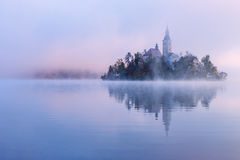 Туманное утро в кровоточенном озере Стоковая Фотография