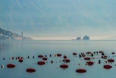 Туманное утро в Perast Стоковое Изображение