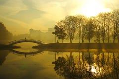 Туманное утро над озером, деревья падения отразили в воде Стоковое фото RF
