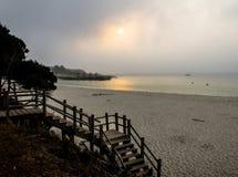Туманное утро на пляже стоковая фотография rf