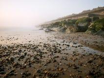Туманное утро на побережье Северного моря. Стоковая Фотография RF