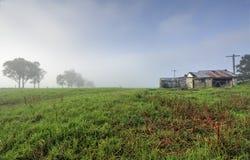 Туманное утро на Brundee Стоковая Фотография