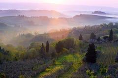 Туманное утро на Toscana Стоковая Фотография