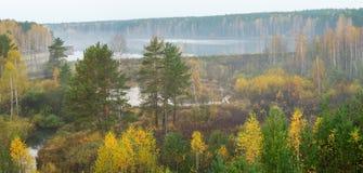 Туманное утро осени на реке леса, Россия, Ural Стоковые Изображения RF