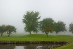 Туманное утро 2 Стоковое Изображение