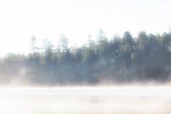 Туманное холодное утро на озере в древесинах Стоковая Фотография RF