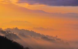 Туманное Borobudur Стоковые Фото