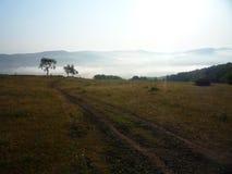 Туманное falley в Румынии стоковое изображение rf