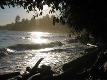 туманные волны Стоковая Фотография