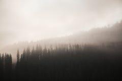 Туманные горы холодные Стоковая Фотография