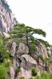 Туманные горы Huangshan Стоковые Фотографии RF