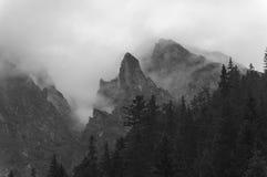 туманные горы tatra гор западное Польша Стоковые Фото