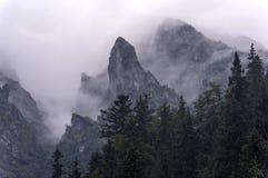 туманные горы tatra гор западное Польша Стоковые Изображения