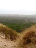 Туманные дюны Стоковые Изображения RF