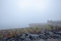 Туманные запруды Стоковые Изображения
