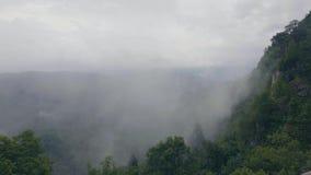 Туманные облака в долине и холмах горы покрыли помох зеленого леса туманный в гористых местностях видеоматериал