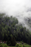 Туманные облака поднимая от высокогорного леса горы Стоковое Фото