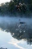 Туманные отражения Стоковые Изображения