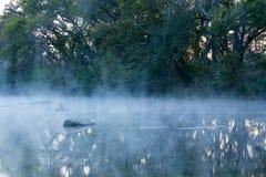 Туманные отражения Стоковые Фото