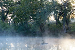 Туманные отражения Стоковое Фото