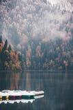 Туманные Coniferous лес и озеро осени с шлюпками Стоковое Фото