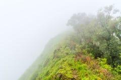 Туманные hikers крышки облаков объединяются в команду na górze зеленого гребня горы Стоковое Изображение RF