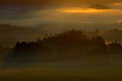 Туманный ландшафт с восходом солнца Холодное туманное туманное утро с sunr Стоковая Фотография