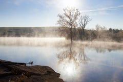 туманный восход солнца стоковые изображения rf