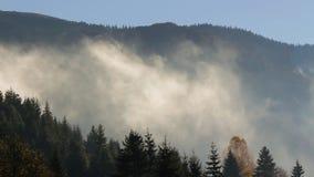 Туманный восход солнца в прикарпатских горах видеоматериал