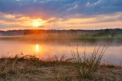Туманный восход солнца лета Туманное река в утре туманное утро Стоковые Изображения RF