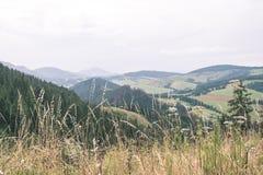 Туманный горный вид утра - винтажный взгляд фильма Стоковая Фотография