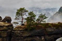 Туманный туманный ландшафт brana Pravcicka строба Pravcicka самый большой естественный свод песчаника в Европе в чехе Швейцарии стоковое изображение