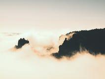 Туманный мечтательный ландшафт Глубокая туманная долина в парке Саксонии Швейцарии осени вполне тяжелых облаков густого тумана Пе Стоковые Изображения