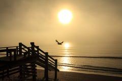 Туманный океан 9 утра Стоковое фото RF